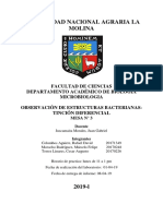 MICROBIOLOGIA Inf. 2.docx