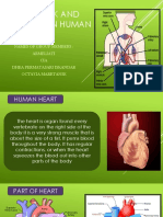 BAHASA INGGRIS Heart Work and Function in Human Body