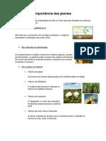 Importância das plantas.docx