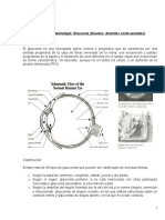 Tema 1 de Oftalmología