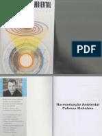 harmonização ambiental rodrigo romo.pdf
