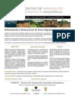 Proyecto Reforestación Peru