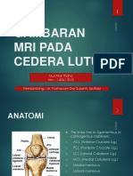 KNEE MRI.pptx
