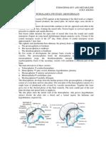 endocrine gigantism