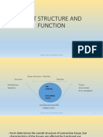JOINT STRUCTURE AND FUNCTION.ppt