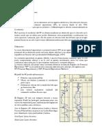 Perfil Potencial Espontaneo listodocx.docx