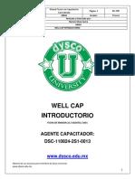 WellCap Introductorio.pdf