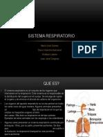Sistema Respiratorio 2