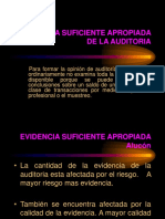 Aporte Evidencias de Auditoria ALUCON