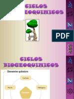 ciclos-biogeoquimicos.pptx