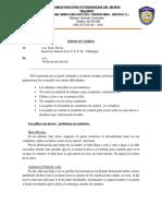 informe deconductua.docx