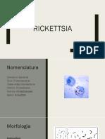 Rickettsia