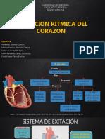 EXITACION RITMICA DEL CORAZON.pptx