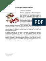 Biologiadipticos.docx