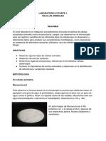 Documento sin título (2).docx