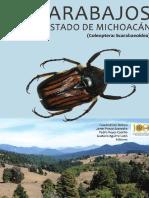 escarabajos_de_michoacán_méxico_deloya_et_al_2016.pdf
