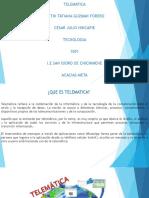 TELEMATICA.pptx