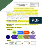 EJEMPLO PROTOCOLO DE SERVICIOS.docx