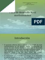 pautadedesarrollonivelmorfosintcticooo-130926125128-phpapp01.pdf