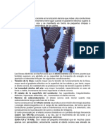 Efecto-en-líneas-de-transmisión.docx