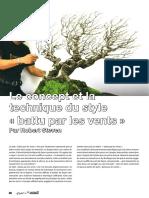 technique battut par le vent.pdf