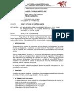 INFORME DE VISITA A CAMPO..docx