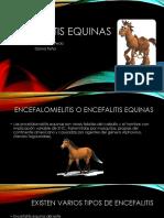 Encefalitis equinas