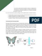 practica microscopio.docx