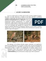 JLMx_Aves-Agricultura_11.pdf