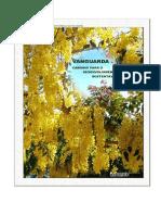 livro_vanguarda_final.pdf