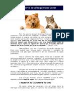 29 06 2016 a Teologia Do Cachorro e Do Gato