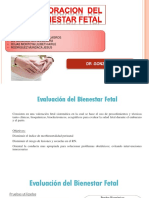 seminario-DOC-gonzales (1).pptx