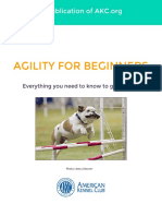 Agility-Ebook_Final_120514.pdf