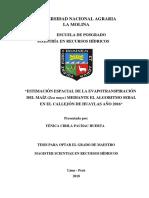 pachac-huerta-yenica-cirila.pdf