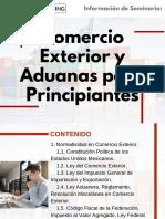 Seminario en Comercio Exterior y Aduanas para Principiantes