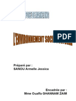 10-Environnement Socioculturel - Jessica