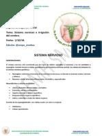 Sistema nervioso e irrigación del cerebro.pdf