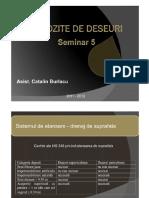 Seminar DD5.pdf