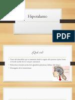 Hipotalamo.pptx