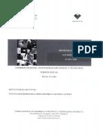 1071054-IF.pdf