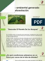Impacto Ambiental Generado Por La Deforestación