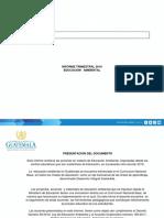 24-1-19 Formato de Informe 2019 Educación Ambiental