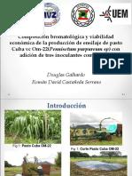 8 Composición Bromatológica y Viabilidad Económica de La Producción VcOM 22