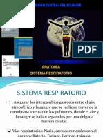 1.- Anatomía Sistema Respiratorio