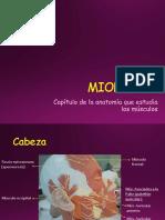 3.- Miología