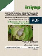 Enfermedades del tomate de cascara en Sinaloa.pdf