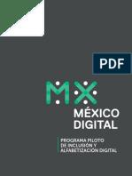 PROGRAMA_PILOTO_DE_INCLUSION_Y_ALFABETIZACION_DIGITAL_PIAD_.pdf