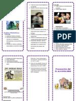 111502372-TRIPTICO-ALCOHOLISMO.doc
