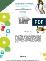 Proyectos multiservicios