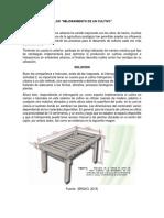 ACTIVIDAD 2, CULTIVO HIDROPONICO.docx